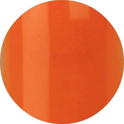 Color Acrylic 06 Mother of Pearl Orange 4 gram